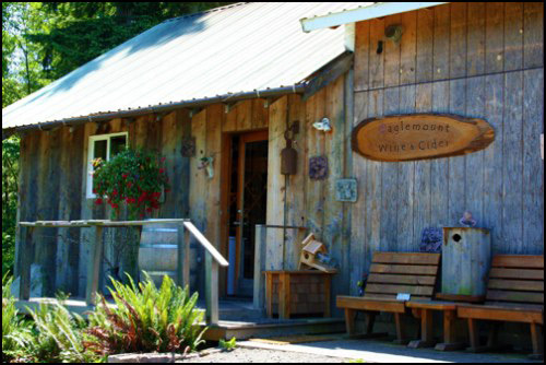 Day Trip from Seattle: Wine Tour on the Olympic Peninsula