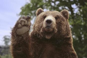 Olympic Game Farm - Waving bears!